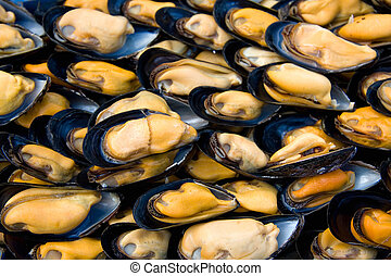 Fresh mussel background - A background of fresh mussels for...