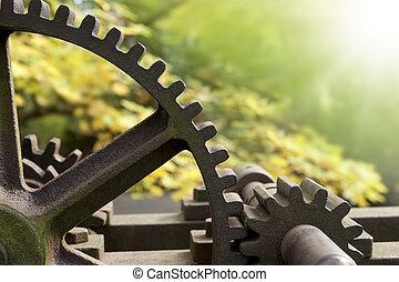 Old rusty gears, transmission wheels