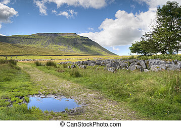 Ingleborough - The path to Ingleborough from Chapel-le-Dale....