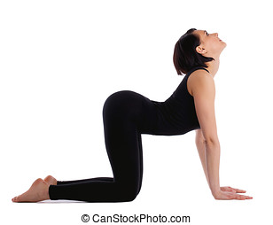 woman back bends yoga - cat pose - young woman training in...