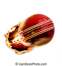 Cricket ball through fire