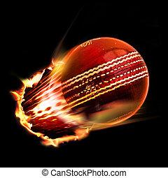 cricket ball through flames