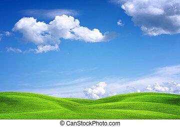 hermoso, verde, paisaje