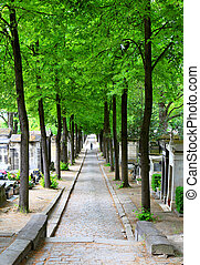 Spring cemetery alley