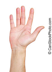 hand up - a hand up in the air on white background