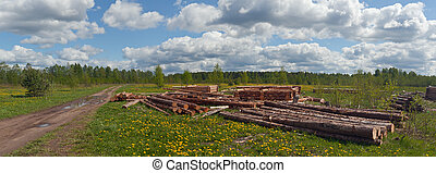 Site of a new log hut, rural landscape