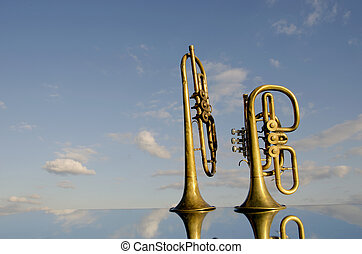 two musical wind instrument on mirror