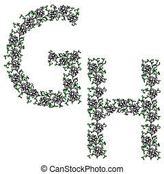 mano, dibujo, ornamental, alfabeto, carta, GH