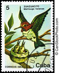CUBA - CIRCA 1984 Hummingbird - CUBA - CIRCA 1984: A Stamp...