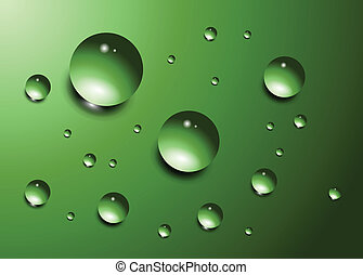 Water drops on green background, vector.