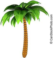 palma, árvore, tropicais, desenho, elemento