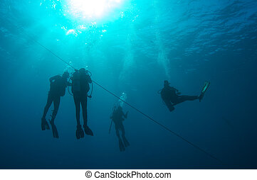 Scuba divers on a safety stop, south Florida.