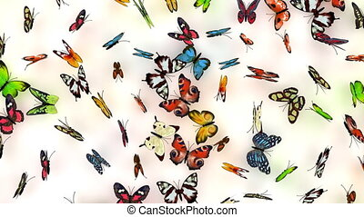 butterflies background, 3d animation, alpha channel included...