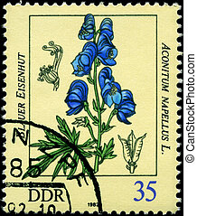GDR - CIRCA 1982 Aconite - GDR - CIRCA 1982: A Stamp shows...