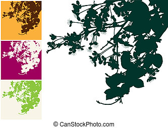 Branch of a blossoming cherry. Vector illustration. Manual...