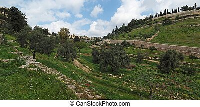 Gehenna Hinnom Valley near the Old City in Jerusalem