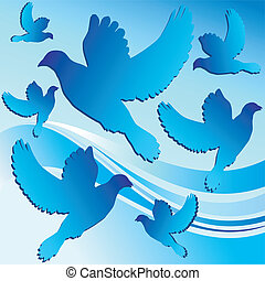 White dove, bird contour in blue background, vector...
