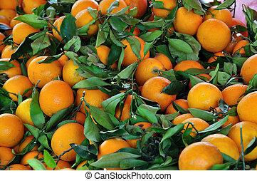 oranges fruit background