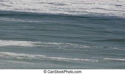 Wavy sea on a sunny day.