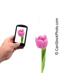 Mobile Phone - A mobile phone taking a picture