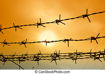 wire fence - photographed by adding a gradient filter effect...
