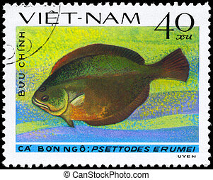 VIETNAM - CIRCA 1982 Flatfish - VIETNAM - CIRCA 1982: A...