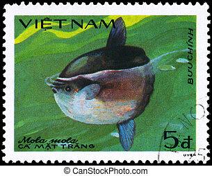 VIETNAM - CIRCA 1984 Sunfish - VIETNAM - CIRCA 1984: A Stamp...