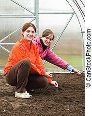 women sows in bed at hothouse