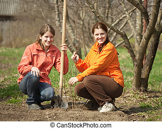 omen making orchard - Two young women making orchard with...