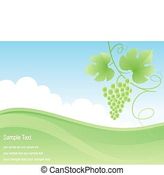 Green field and grape background.