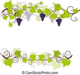 jardin, raisin, vignes, cadre