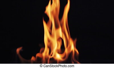 Fire flames on black background - Real fire flames Filmed on...
