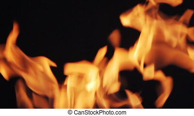 Fire flames on black background - Real fire flames. Filmed...
