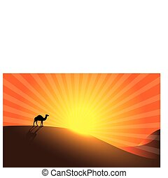 sunrise - Camel in Desert.