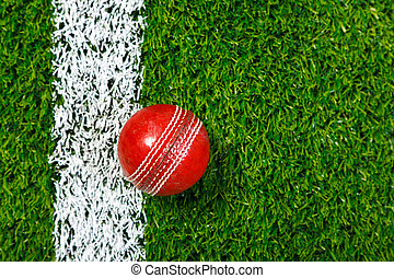 Cricket ball on grass from above. - Photo of a cricket ball...