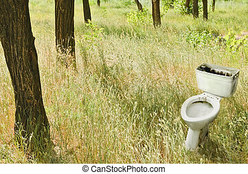 Forest landscape: the old dirty toilet among the trees -...