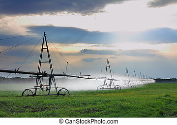 automatic irrigation of agriculture field - landscape with...