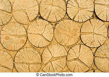 Wooden logs texture
