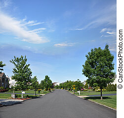 Suburban Neighborhood Street - Suburban Residential District...