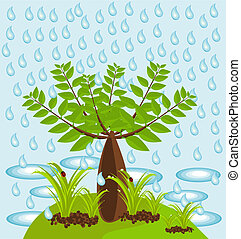 Baobab tree in jungle - An isle with big baobab tree and...