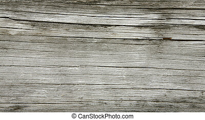 old wood texture - texture of old crannied wood