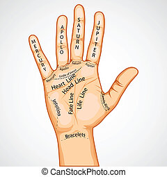 Palmistry Map - illustration of palmistry map on open palm...