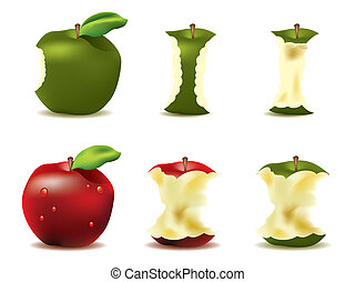Mouthwatering fresh apple vector