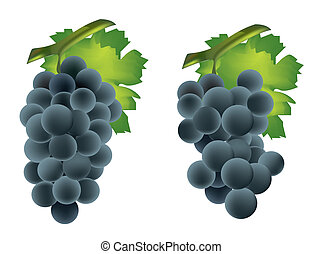 Fresh grape cluster with green leafs