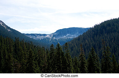 Costal mountains of British Columbia Canada