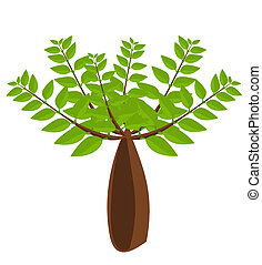 Baobab tree illustration - Big baobab tree vector...