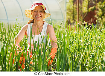 woman in bed of onion - Smiling woman sitting in bed of...