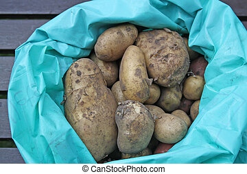 bag of potatoes - sack of potatoes