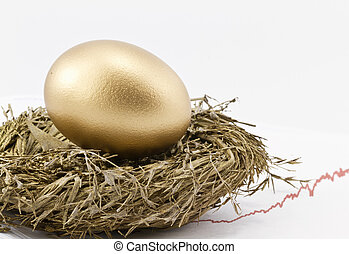 Successful Return On Investment - Gold nest egg sits in gold...