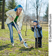 mother and son  planting  tree